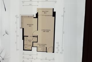1室1廳1衛  276呎
